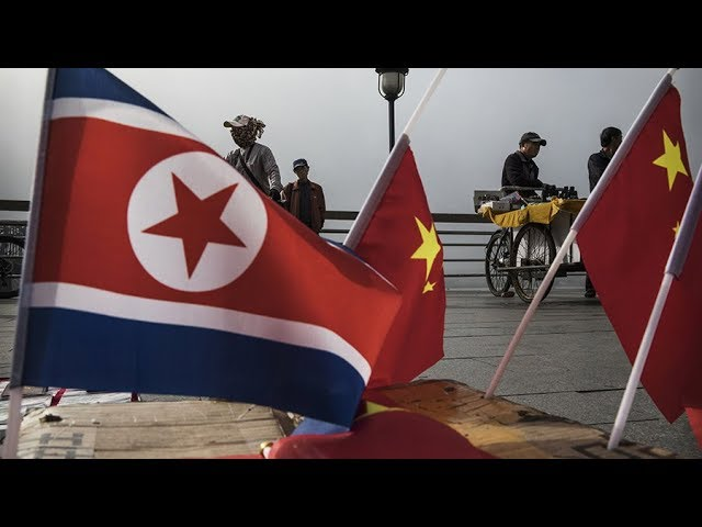 China won't allow regime change in N. Korea – fmr US diplomat