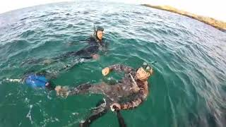 Sortie amateur Jijel #apnée #Underwater ⚓🏊♂️🌊🚣♂️😉