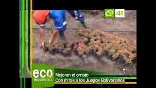 102 ECORREPORTEROS SEMBRADO DE PLANTAS ORNAMENTALES xvid