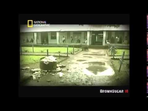 National Geographic Le Virus Ebola / Duck-E Héberg