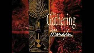 Watch Gathering Strange Machines video