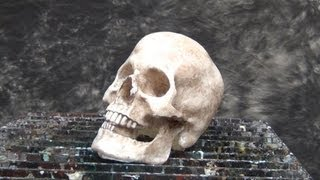 Resin Casting Tutorial: Skull Cast