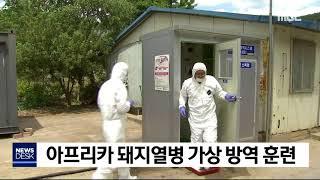 아프리카 돼지열병 가상 방역 현장훈련