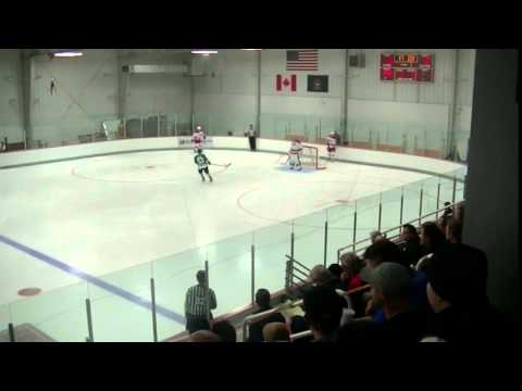 Dallas Stars vs. Carolina Hurricanes/NHL Prospect Tournament