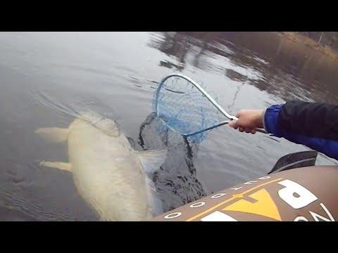 #6 Необычные случаи на рыбалке!