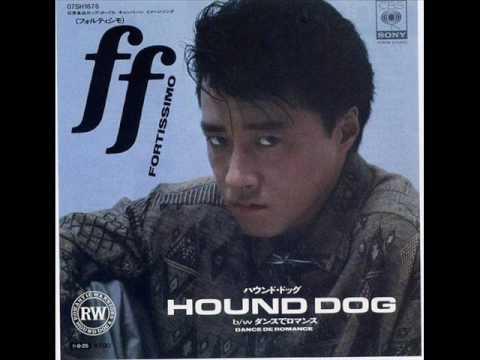 HOUND DOGの画像 p1_9