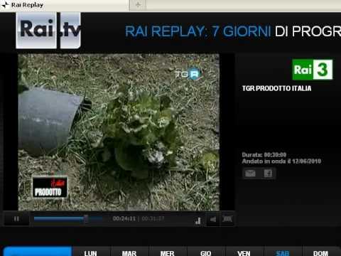 Tunnel anti infestanti: Sonia Bellezza viene intervistata da RAI 3