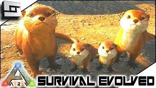 Otters! Otter Breeding! Baby Otters! ARK: Survival Evolved E19 ( Ark Ragnarok Map )