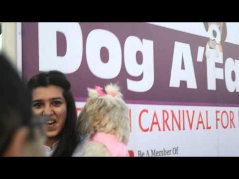 Dog Pageant at Colaba Radio Club, Mumbai