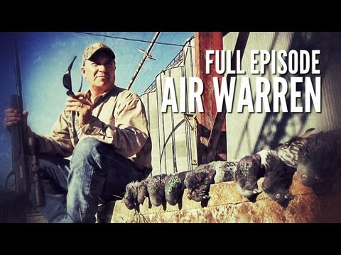 Hunting With GAMO Air Rifles   Air Warren
