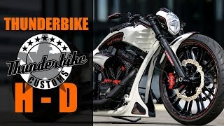 "Harley Davidson Screamin Eagle ""OuterLimit"" by Thunderbike"