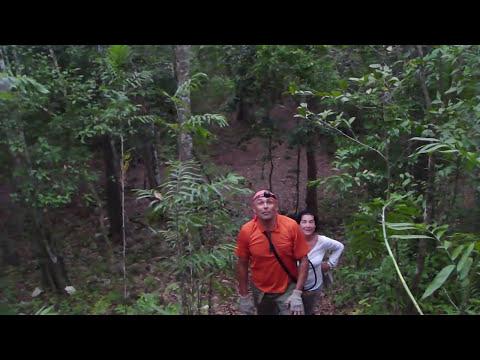 Exploración Maya 51, Tintal, Guatemala, Eduardo González Arce