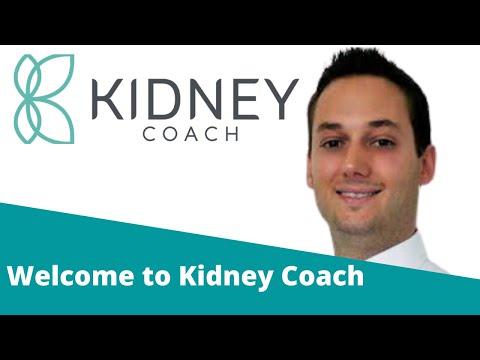 Kidney Diet - The Best Diet for Kidney Disease Sufferers?