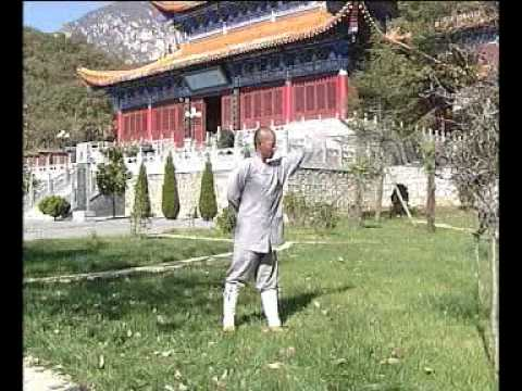 Shaolin Yi Jin Jing Muscle & Tendon Changing Classic