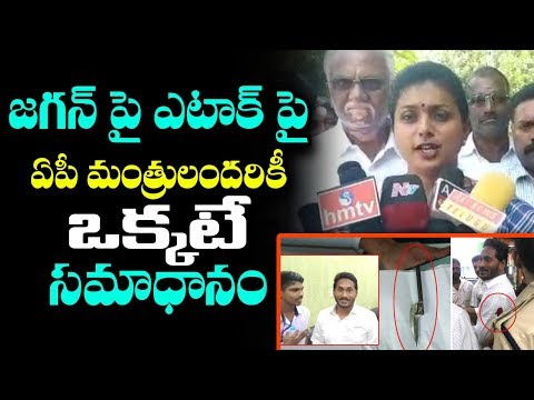 MLA Roja Serious Comments on CM Chandrababu & TDP Leaders over his Comments on Jagan