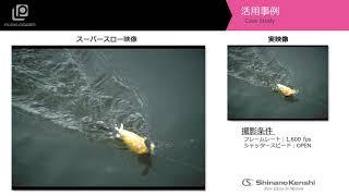 ハイスピードカメラ「水面を移動するルアーの動き」