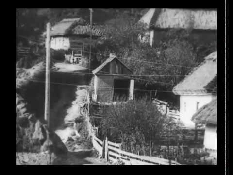 Хутора в Запорожье в 20-х годах прошлого века. Кинохроника
