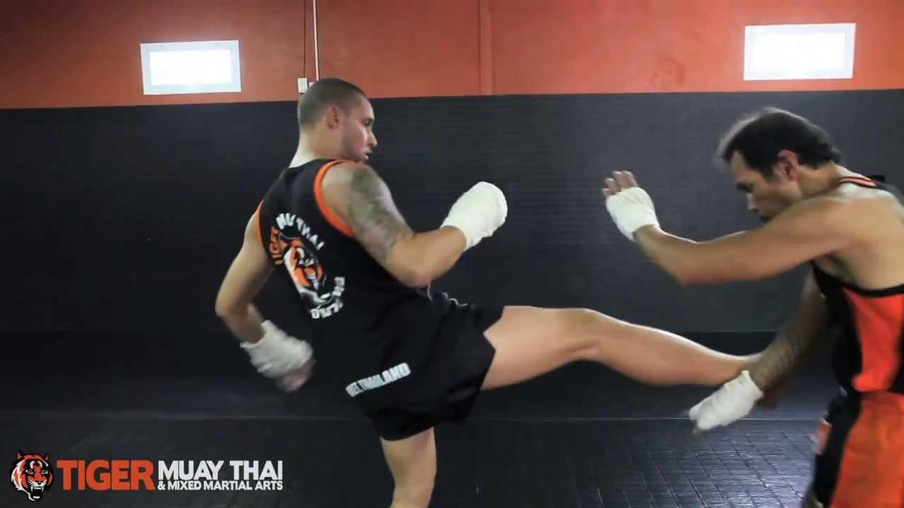Kick Technique Technique Front Kick