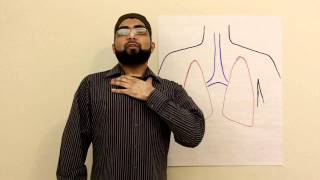 Iceberg Lungs: How to have long breath for Quran recitation
