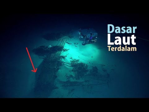 inilah Penemuan Hewan Paling Aneh & Menyeramkan Yang Pernah Ditemukan di Dasar Laut Terdalam!