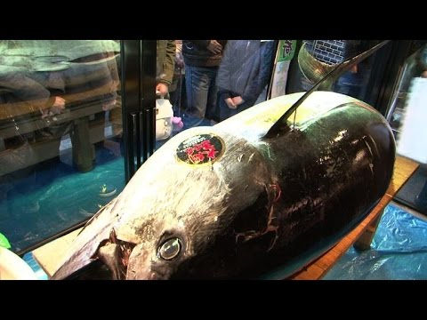 Bluefin tuna nets $37,000 in Tokyo new year auction