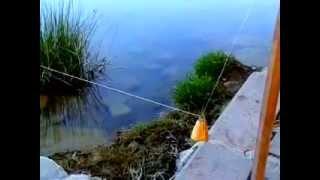 Balığın zili zıplattığı an.. Mavi Göl (Bayındır Barajı) Sazan avı