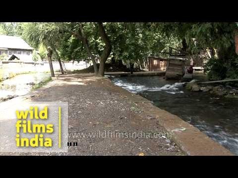 Adventure sport: Trout fishing in Kashmir