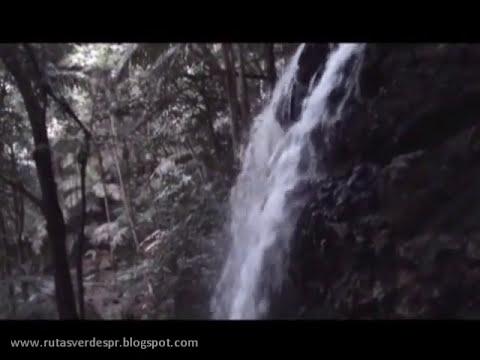 Explorando los Tres Picachos, Jayuya Puerto Rico