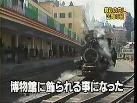 ダージリン・ヒマラヤ鉄道の画像 p1_7