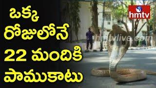 వరదల్లో కొట్టుకు వస్తున్న పాములు | Snakes Hulchal in Diviseema  | hmtv