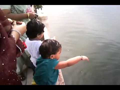 Kids Feeding Fishes  Ana Sagar Lake - Ajmer India