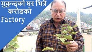 डरलाग्दा भिलेन मुकुन्दको घरमा यस्तो अचम्मको फ्याक्ट्रि ।। Mukunda Shrestha ।।  Masti Tv