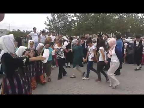 Vadi - Kuzey Sivas Kültürü Suşehrililer - Gölova Horon Ekibi - Dik Horon - Sivas/Giresun
