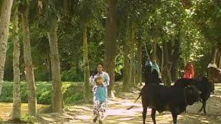 Vadaima ভাদাইমা'র জ্বর তিন মণ পাচ কেজি - New Bangla Funny Video 2017 | Music Heaven