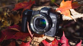 Canon EOS R: Things Nobody Is Talking About