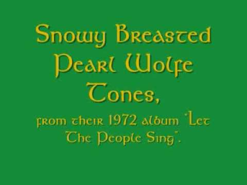 Snowy Breasted Pearl - Wolfe Tones