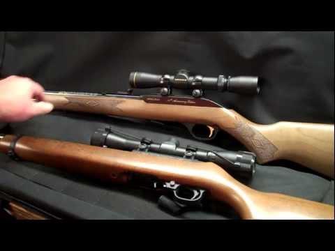 Ruger 10/22 vs Marlin Model 60