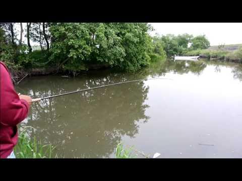 画像: YouTube 1:20秒 www.youtube.com