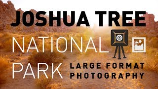 Landscape Photography: Large Format Film in Joshua Tree National Park