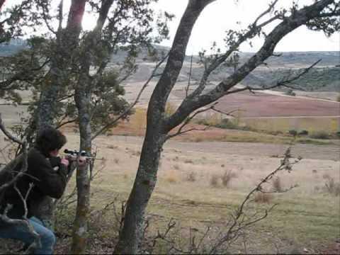 Caza de ciervo (en Teruel)