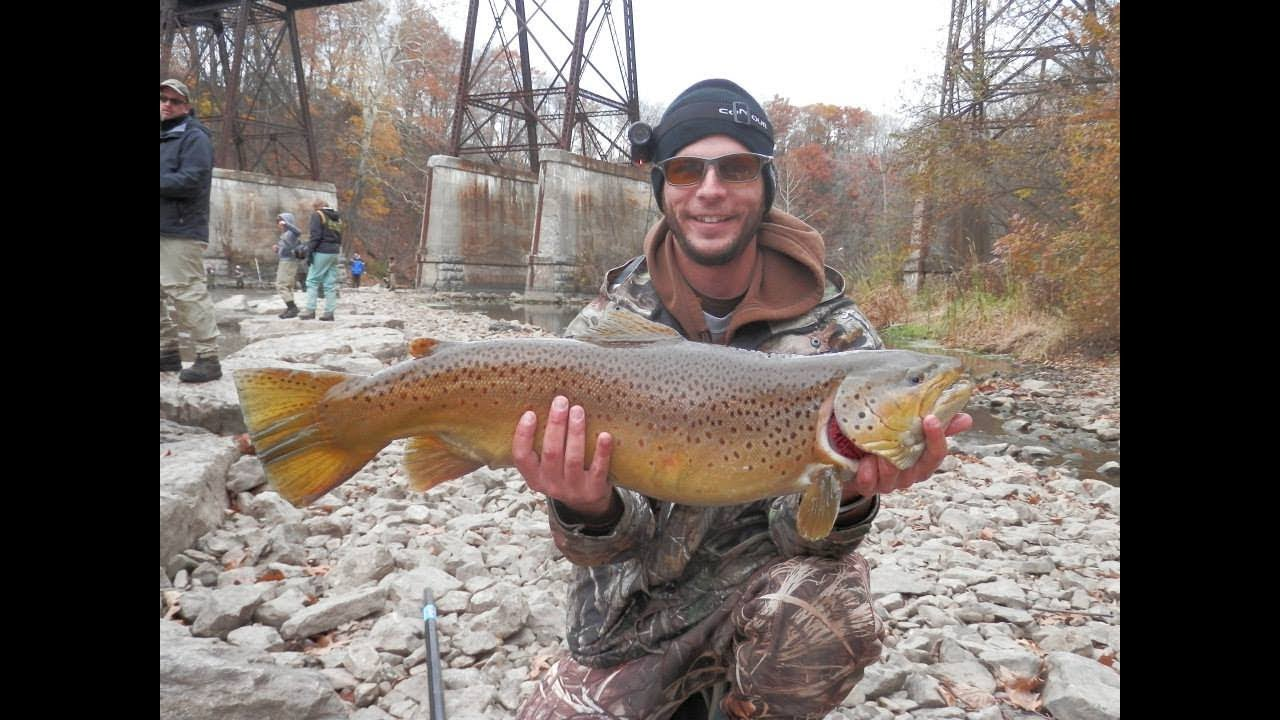 Brown trout fishing in western new york youtube for Fishing in new york