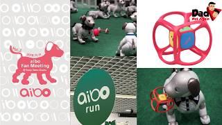 Sony Aibo Fan Meeting Osaka - New Toy & Hard case