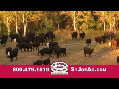 Buy Cattle Feed St. Joseph Missouri - St. Joseph Agri Services