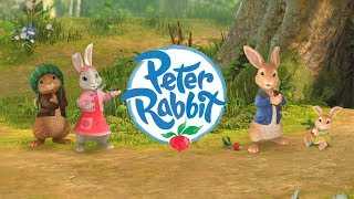 🔴Peter Rabbit | Rabbit Fun | LIVE
