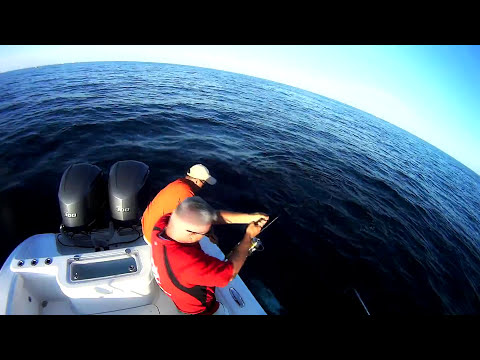 Bluefin Tuna Fishing Long Island, New York. Pesca de atún aleta azul