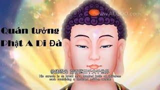 Quán Tưởng Sắc Thân Của Đức Phật A Di Đà - Nam Mô A Di Đà Phật
