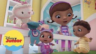 Aventuras na Terra dos Bebês | Doutora Brinquedos