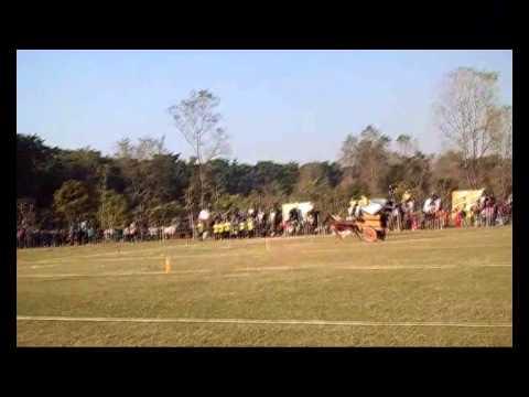 Hati Daud Ko 12 Gate  2 video