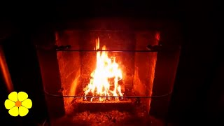 Wood Crackling Sounds and Real Fire Pit in the Living Room - White Noise - Sounds to Relax