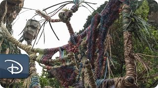 'Placemaking' Pandora - The World of Avatar | Disney's Animal Kingdom